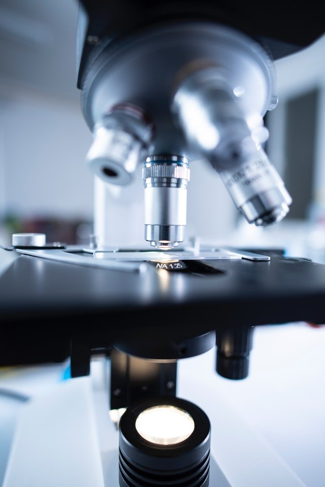 reogma|Pharmaceutical & Biotechnology industry in USA growing in excess of 6% annually