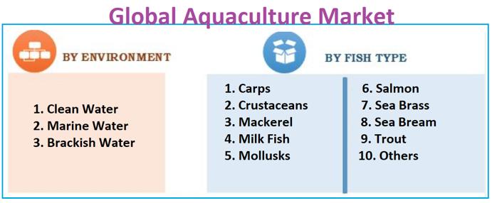 reogma Global Aquaculture market to reach $42.16 Billion in 2025