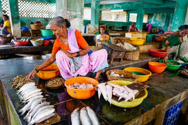 reogma Fish industry in India to reach US$ 25.39B by 2023