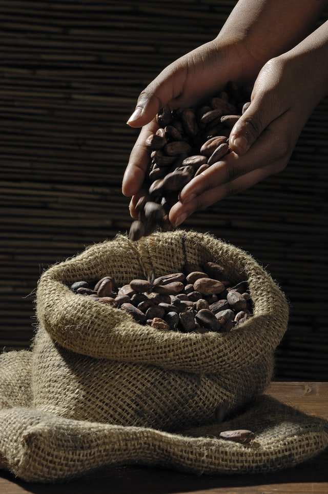 reogma|Cocoa production industry in Africa outputs 70% of global